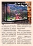 Газета СУРОК.ИНФО №9 (46), 2013 г., стр. 7