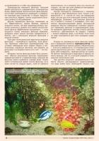 Газета СУРОК.ИНФО №9 (46), 2013 г., стр. 8