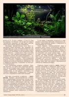 Газета СУРОК.ИНФО №9 (46), 2013 г., стр. 9