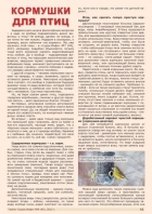 Газета СУРОК.ИНФО №9 (46), 2013 г., стр. 13