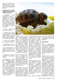 Газета СУРОК.ИНФО №10 (20), 2010 г., стр. 3