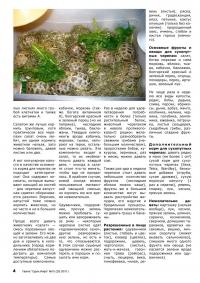 Газета СУРОК.ИНФО №10 (20), 2010 г., стр. 4