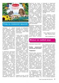Газета СУРОК.ИНФО №10 (20), 2010 г., стр. 7