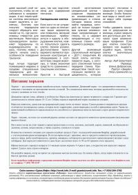 Газета СУРОК.ИНФО №10 (20), 2010 г., стр. 8