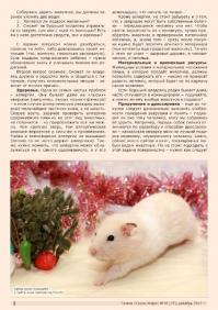 Газета СУРОК.ИНФО №10 (37), 2012 г., стр. 2