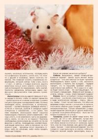 Газета СУРОК.ИНФО №10 (37), 2012 г., стр. 3