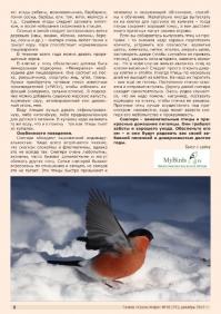 Газета СУРОК.ИНФО №10 (37), 2012 г., стр. 6