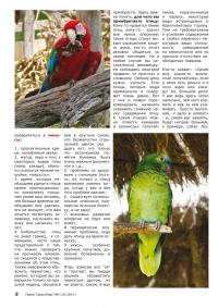 Газета СУРОК.ИНФО №11 (20), 2010 г., стр. 2