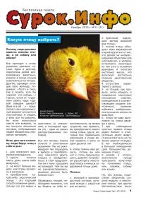 Газета СУРОК.ИНФО №11 (20), 2010 г., стр. 1