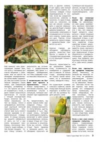 Газета СУРОК.ИНФО №11 (20), 2010 г., стр. 3