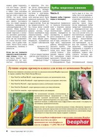 Газета СУРОК.ИНФО №11 (20), 2010 г., стр. 4
