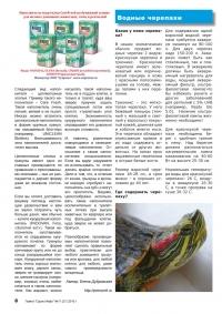 Газета СУРОК.ИНФО №11 (20), 2010 г., стр. 8