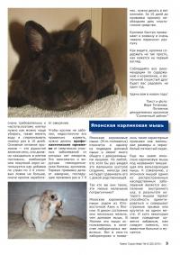 Газета СУРОК.ИНФО №12 (21), 2010 г., стр. 3