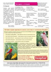 Газета СУРОК.ИНФО №12 (21), 2010 г., стр. 8