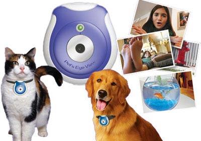 цифровая камера Pet's Eye View